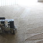 Cleaning Carpets in a home