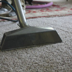 Deep Carpet Cleaning - A Step Above