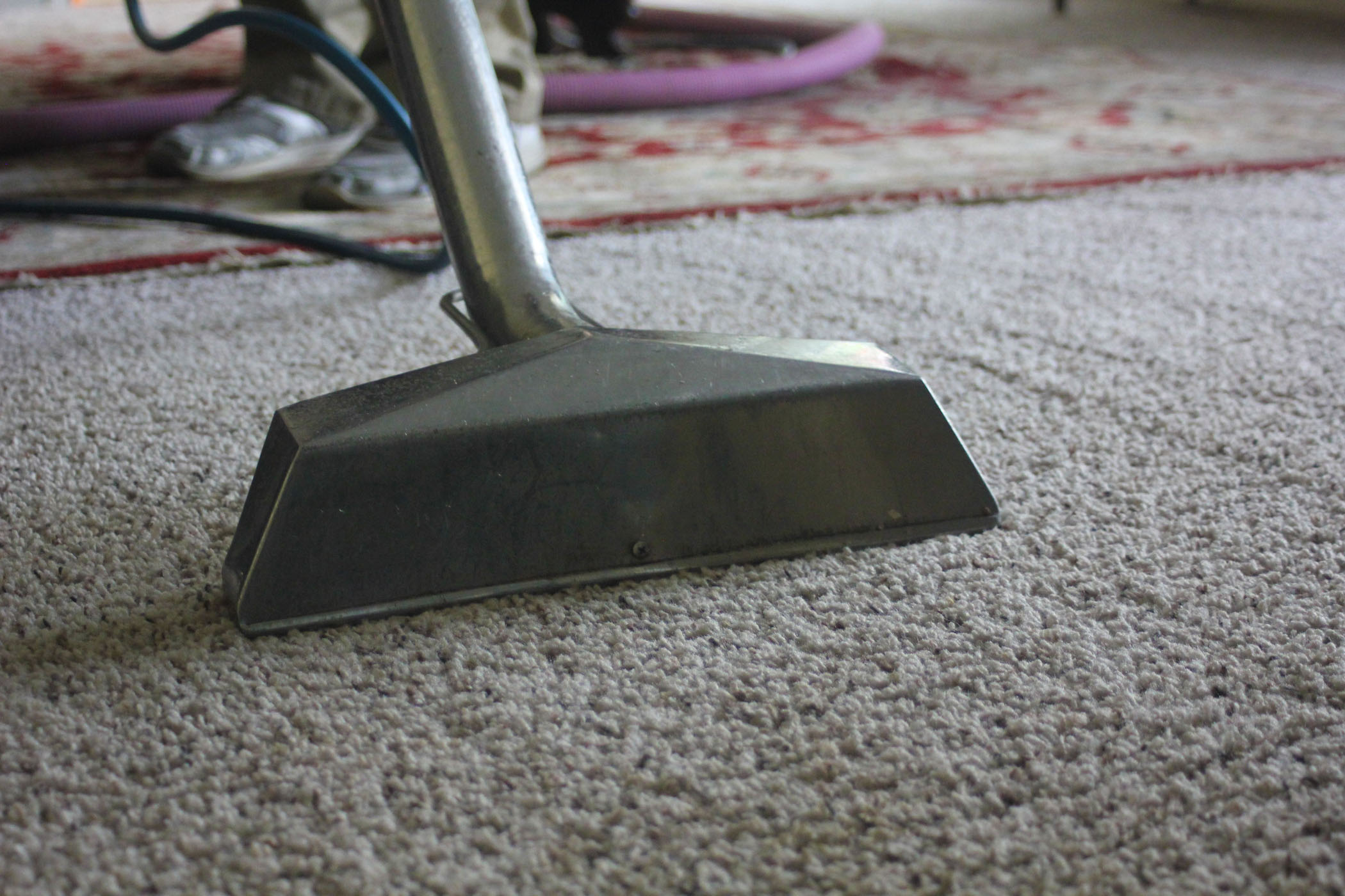 Carpet Cleaning in Franklin, Brentwood, & Nashville, TN