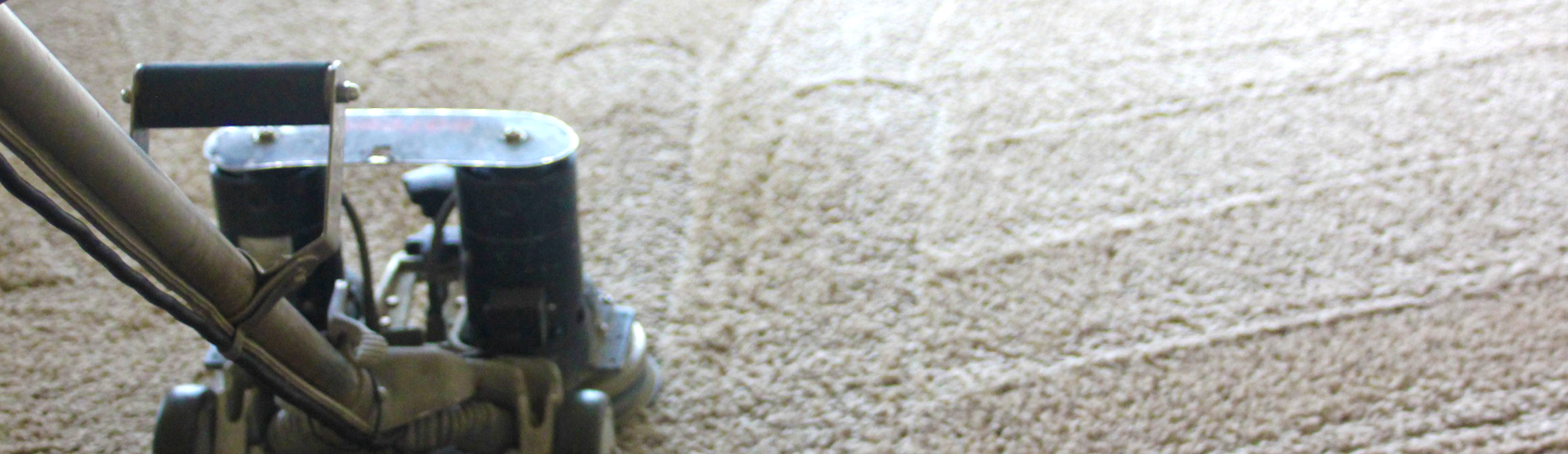 CARPET CLEANING & MORE