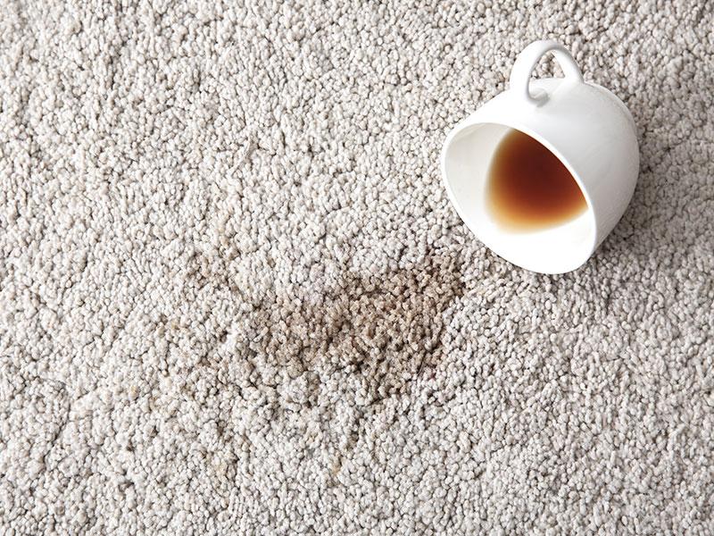 Carpet-Dyeing